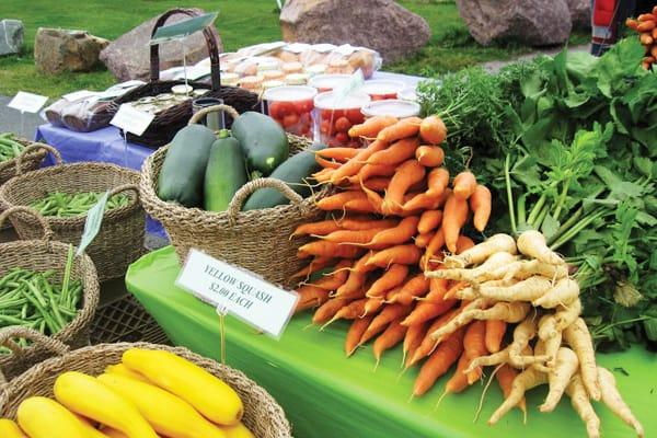 Favourite Farmers Markets: St John's