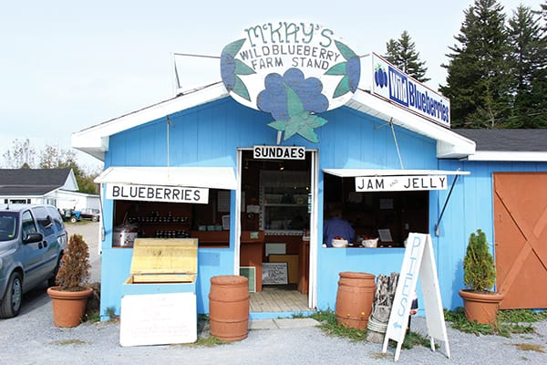 Blueberries and Pie    Oh My! - Saltscapes Magazine