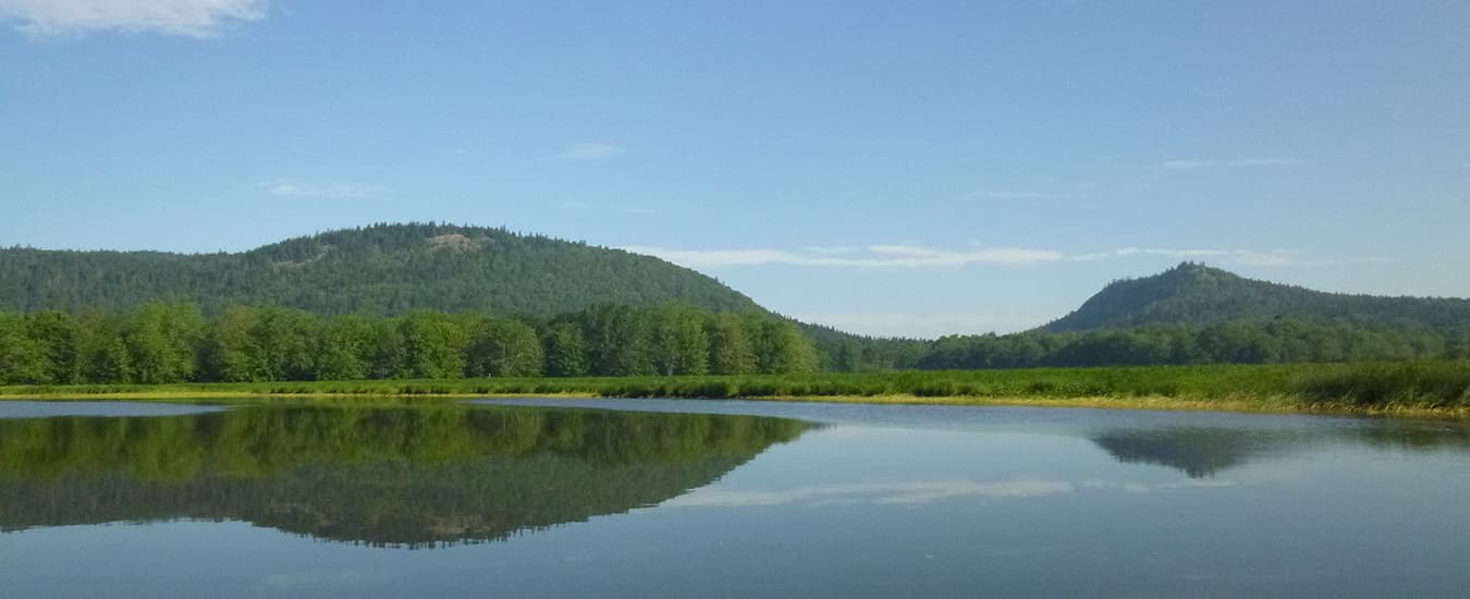 Hampton Marsh looking towards Pickwauket Mountain.