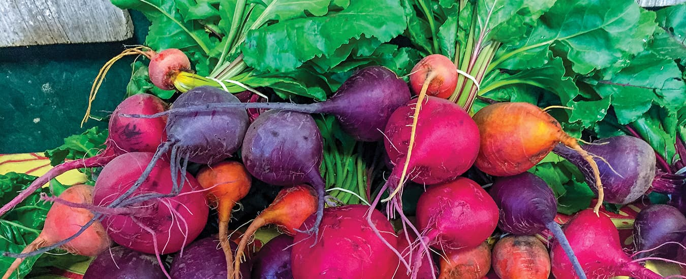 Beets come quickly and easily from seed, and come in a range of colours, too.