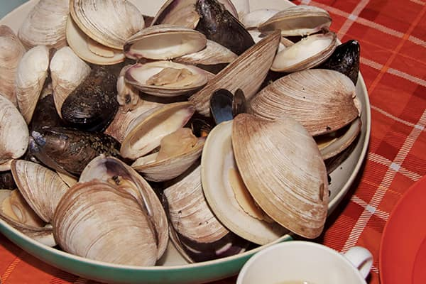 For mussels and small clams, steaming in a bit of water or wine until they open is all the work that's needed.