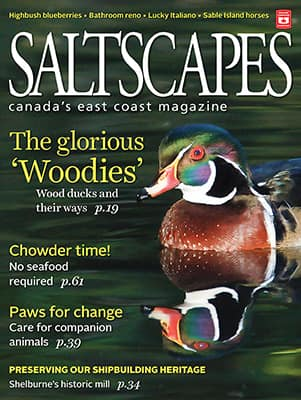 Saltscapes Magazine