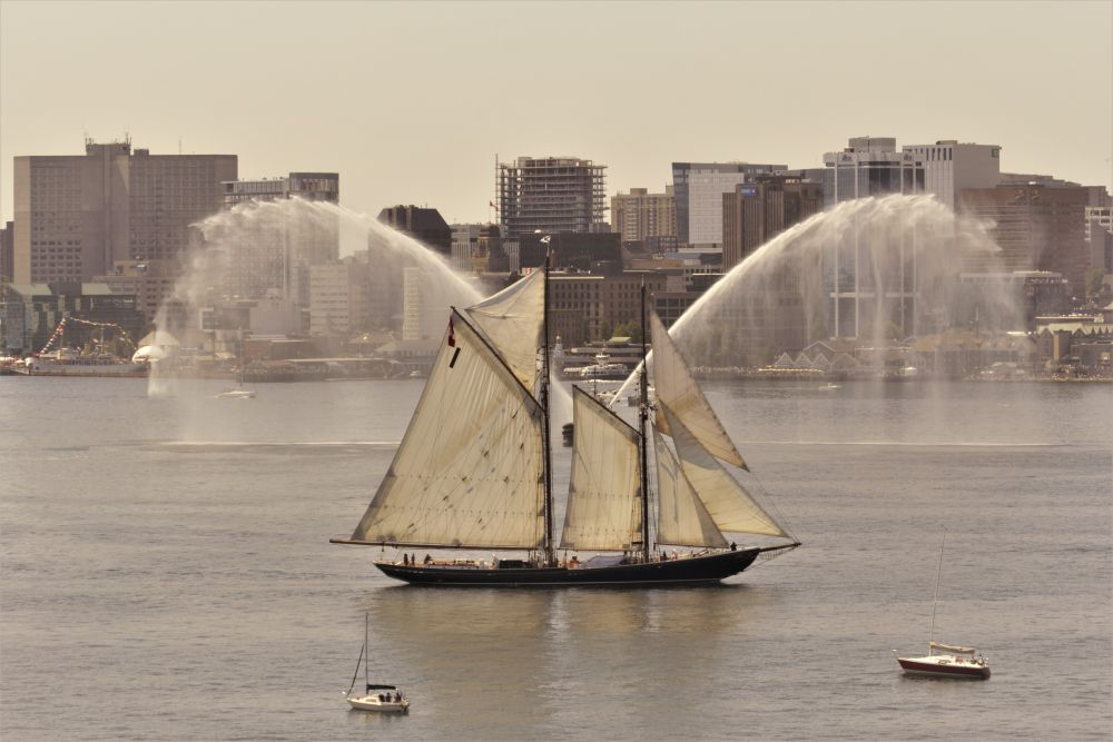"""""""Tall Ships Sailout, Halifax Harbour"""", by Kelly Donovan. Taken at Halifax Harbour."""