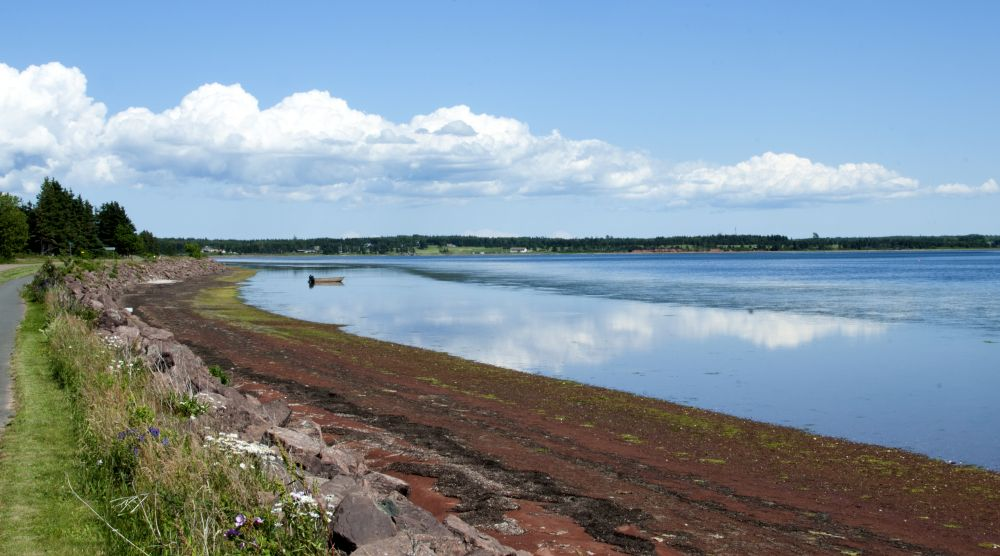 """Picture Pefrect"", by Carolyn McGrath. Taken at Stanhope, PEI."