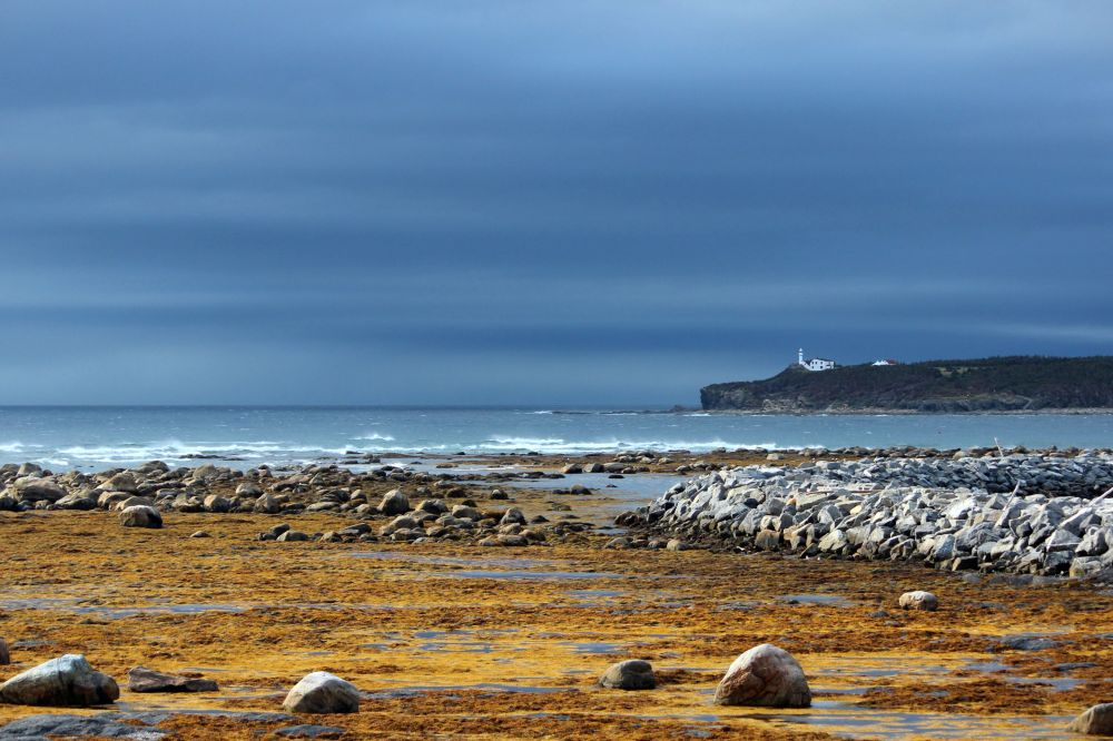 """""""Lobster Cove Head Lighthouse"""", by Carla Johnston. Taken at Rocky Harbour, NL."""