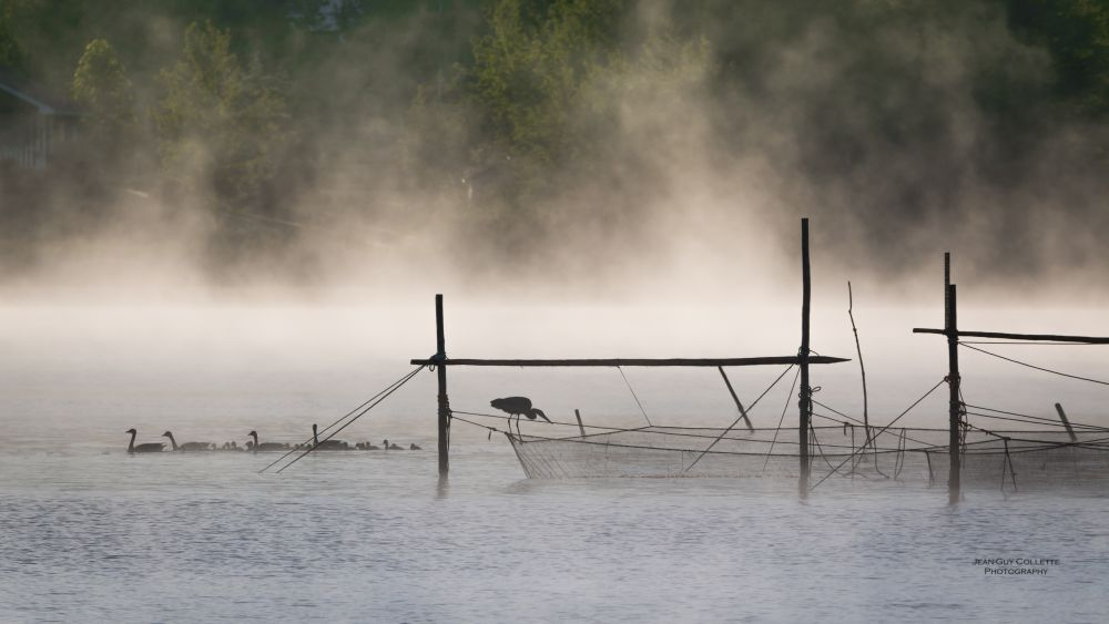 """Morning mist"", by Jean-Guy Collette. Taken at Sainte-Marie-de-Kent wharf."