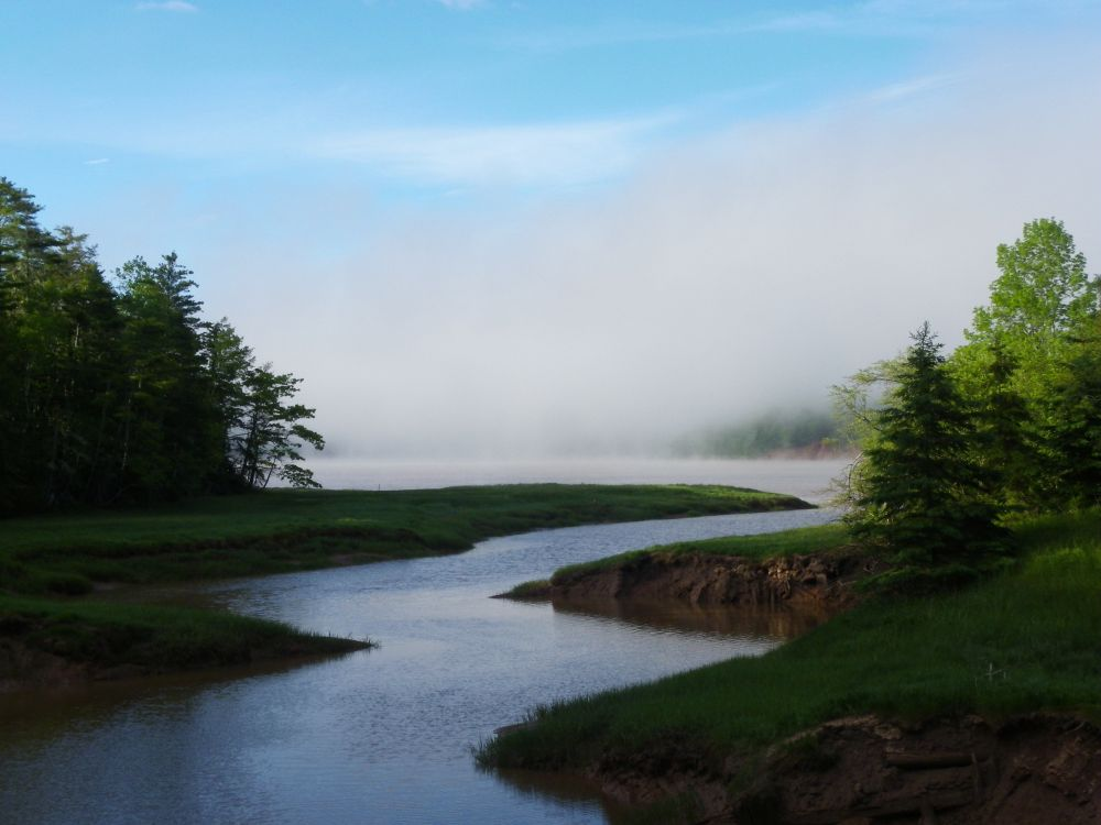 """Fog lifting off the river"", by Ann. Taken at Princeport."