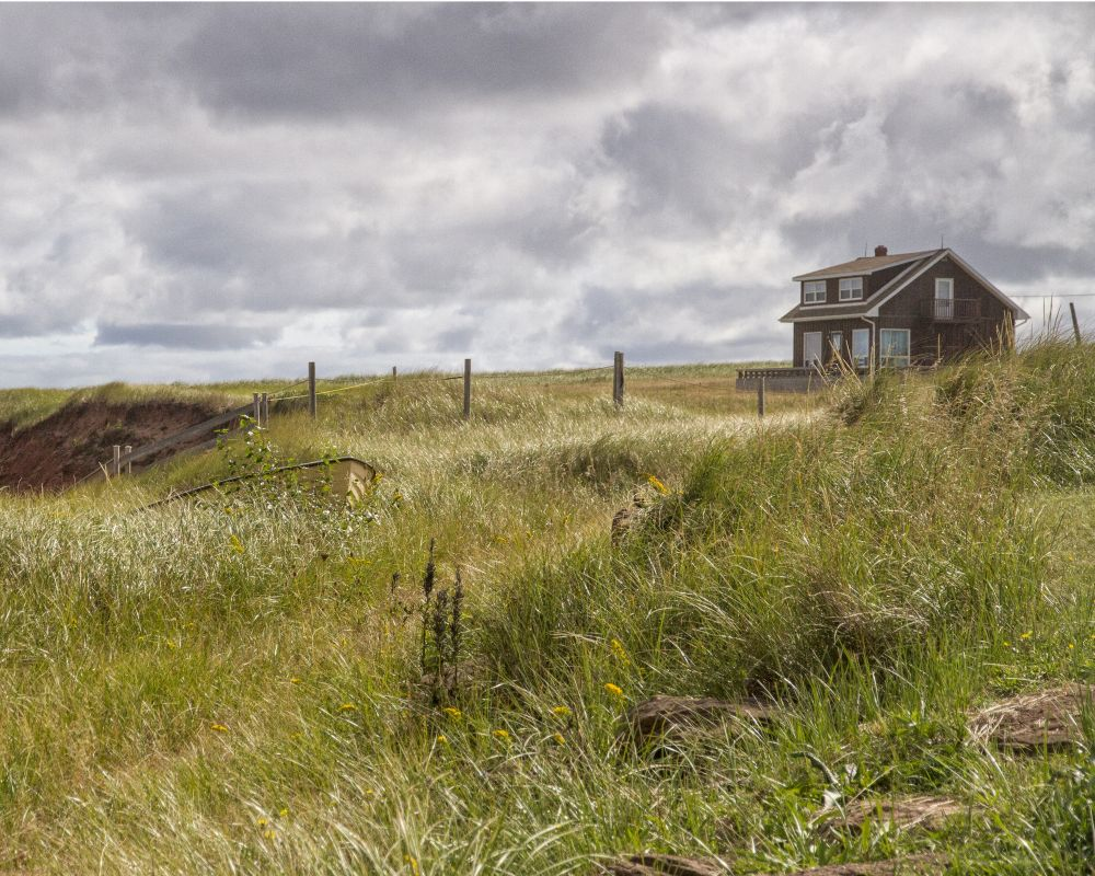"""""""Windy Day"""", by Gary Bowlby. Taken at Cousins Shore, PEI."""