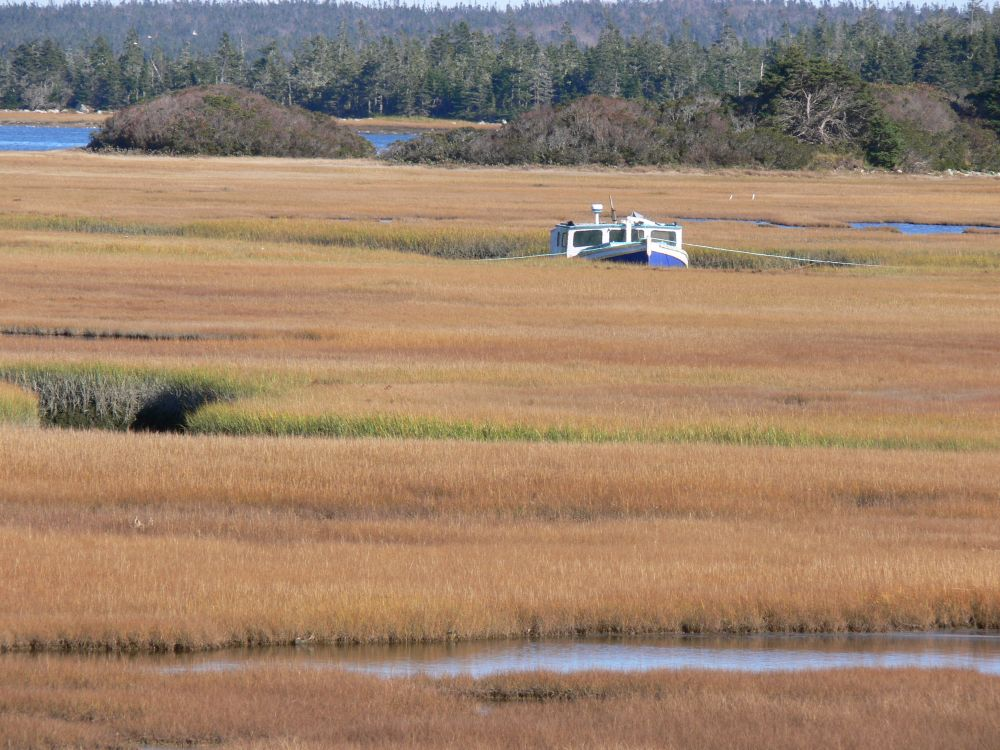 """""""LOW TIDE"""", by G.NEARING. Taken at PINKNEYS POINT."""