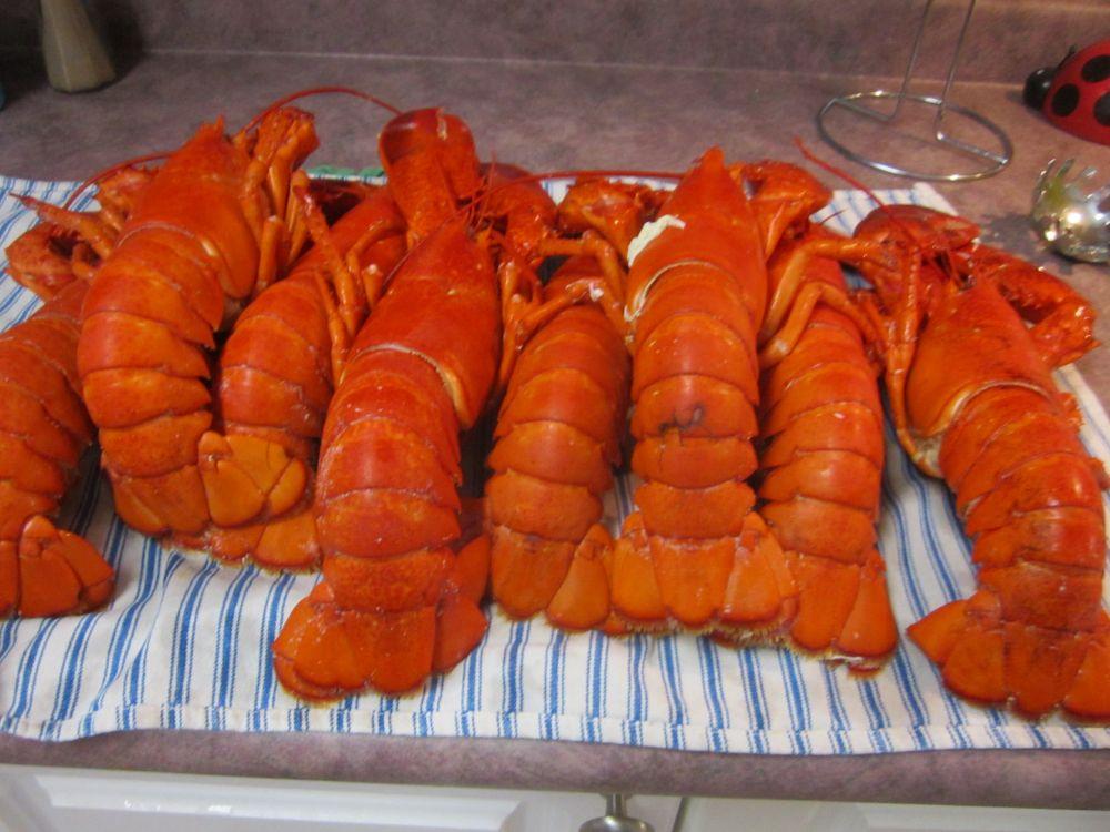 """Lobster Dinner, Mmmm..."", by Anita Daye. Taken at Lake Charlotte, NS."