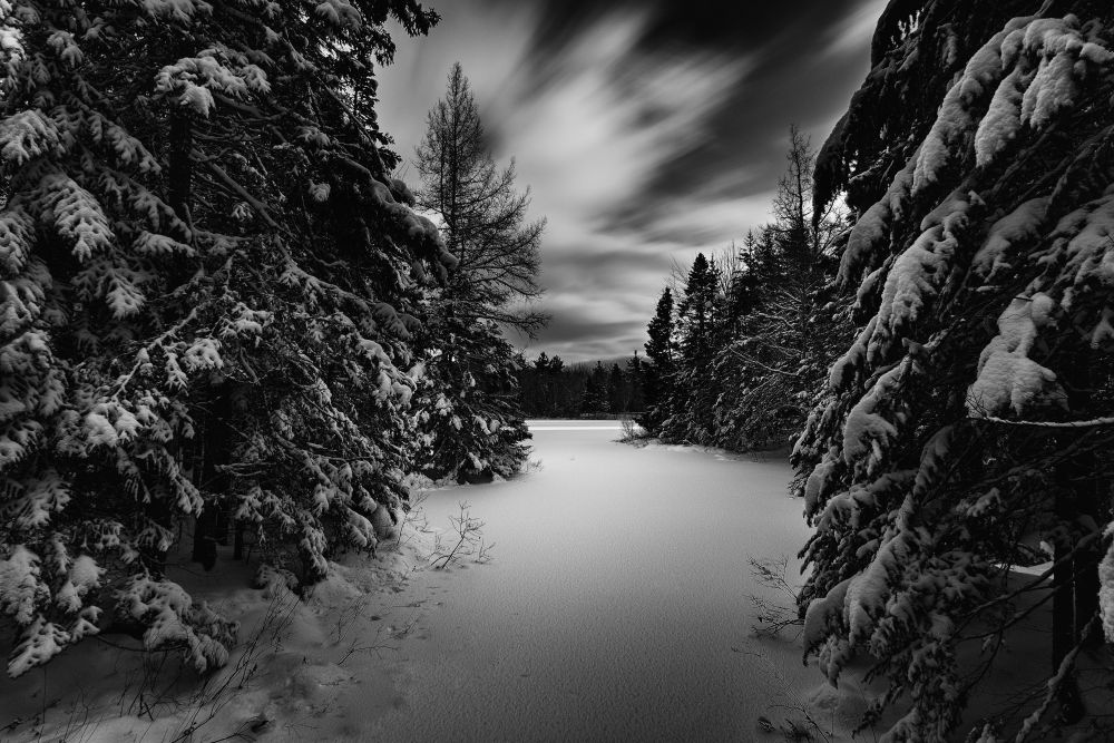 """""""Dreaming of a white Xmas"""", by Shawn Cormier. Taken at Moncton N-B Canada."""