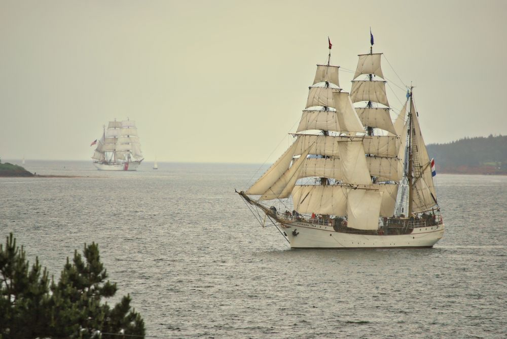 """""""Tall Ships sail into Charlottetown Harbour"""", by Catherine Edward. Taken at Charlottetown Harbour."""