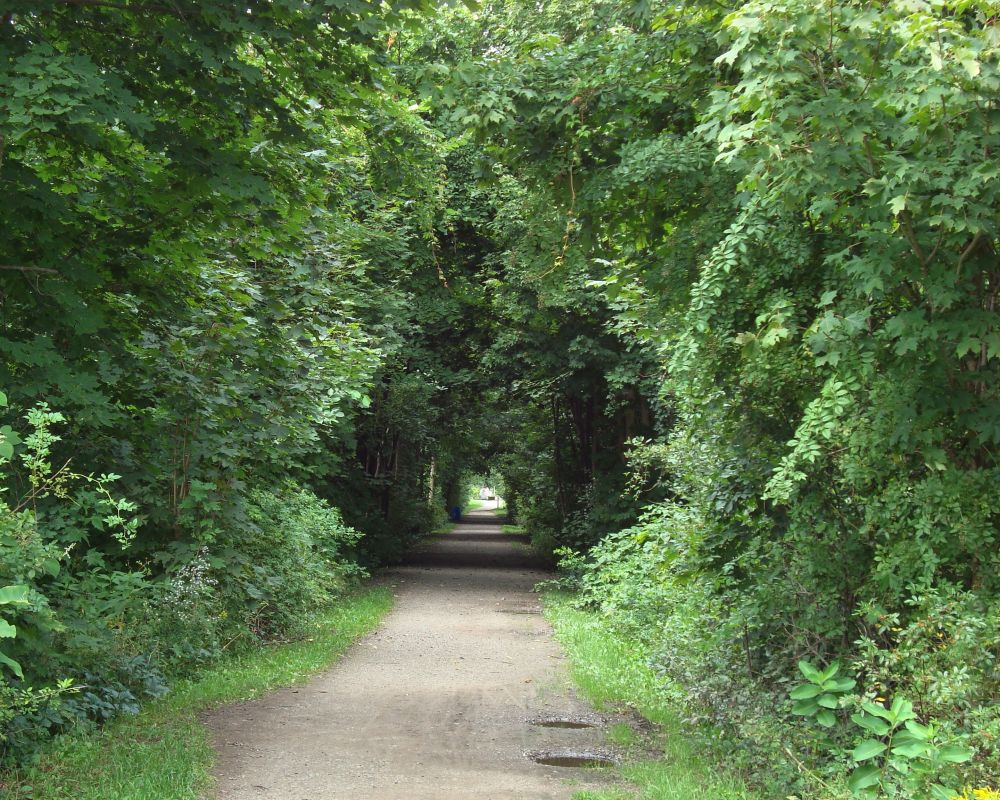 """""""Peaceful Path"""", by Marion Parent. Taken at Kentville."""