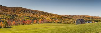 Fall afternoon by