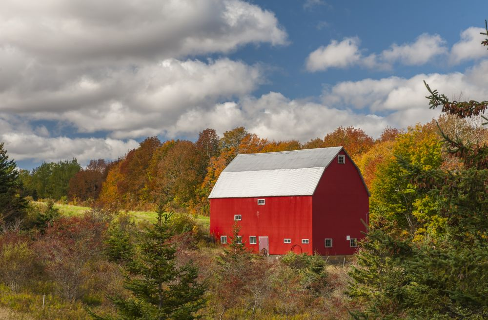 """Color of fall"", by Ray Strickland. Taken at Mt. Thom, Pictou Co.."