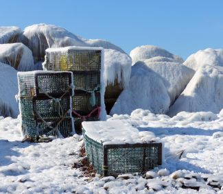Cold Traps by