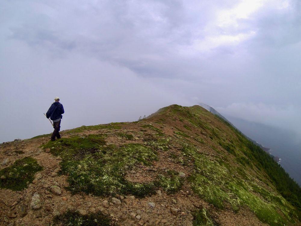 """Walking on Clouds"", by Daniel Archibald. Taken at Kauzmann Trail, Saint Margaret Village, NS."