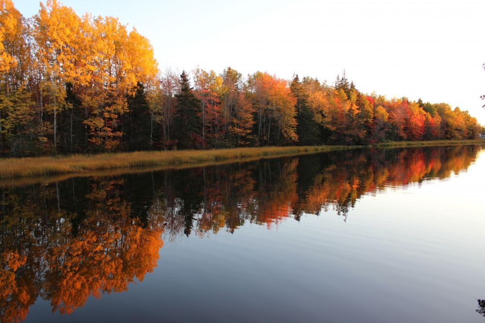 """Fall Reflection"", by Maxine Mackay-Somers. Taken at Tidnish Bridge ns."