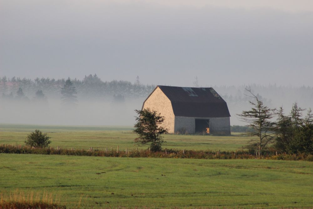 """High Marsh Mist"", by Maxine Mackay-Somers."