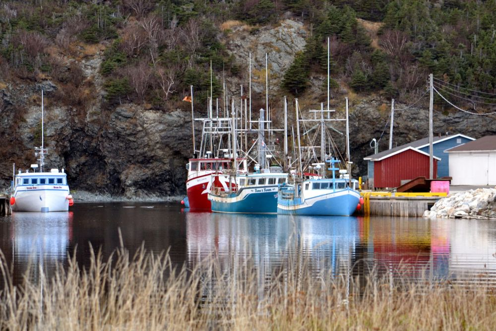 """""""Fishing Boats at rest"""", by barbara Sears. Taken at Trout River NL."""