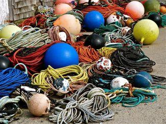 Buoys o' buoys by