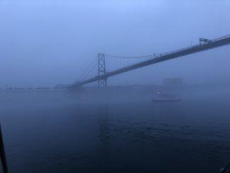 A bridge between by