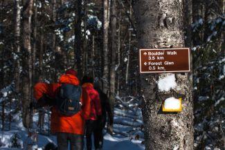 Hike through Boulder Walk by
