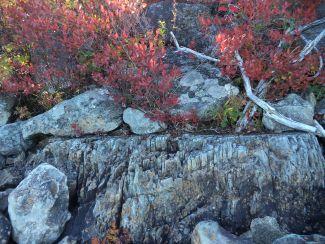 Rocky Shoreline in Fall by