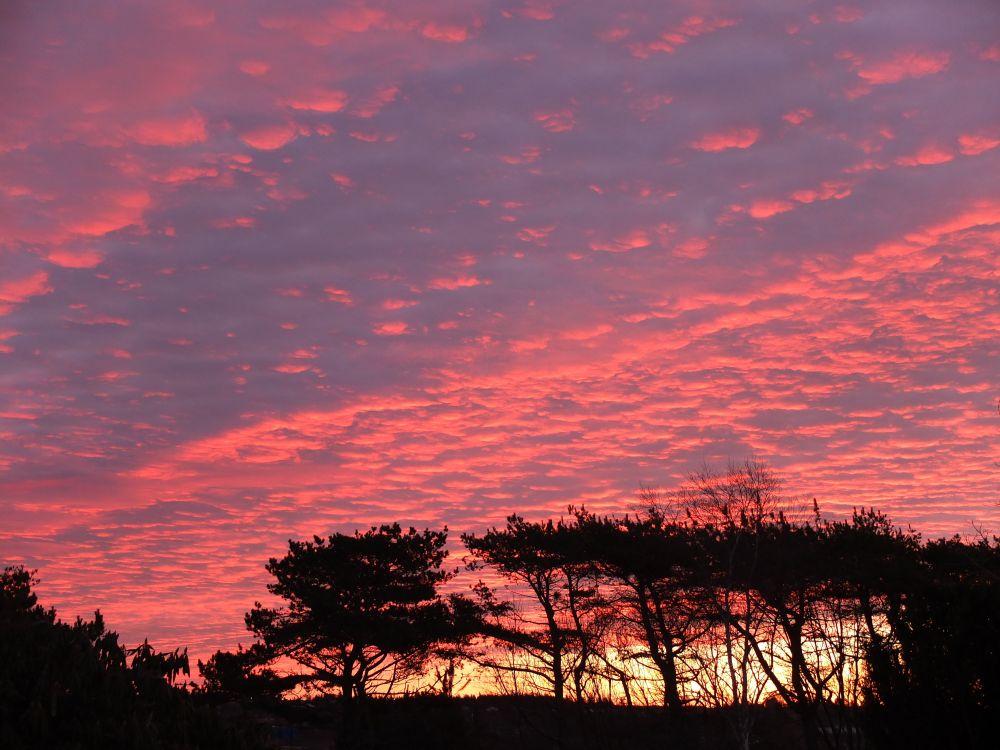 """Backyard Sunrise"", by G. NEARING. Taken at Yarmouth."