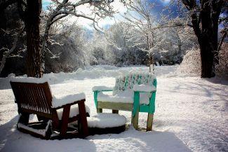 Gran's Backyard by