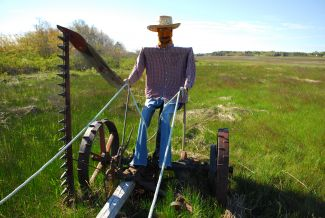 FOLK FARMER by