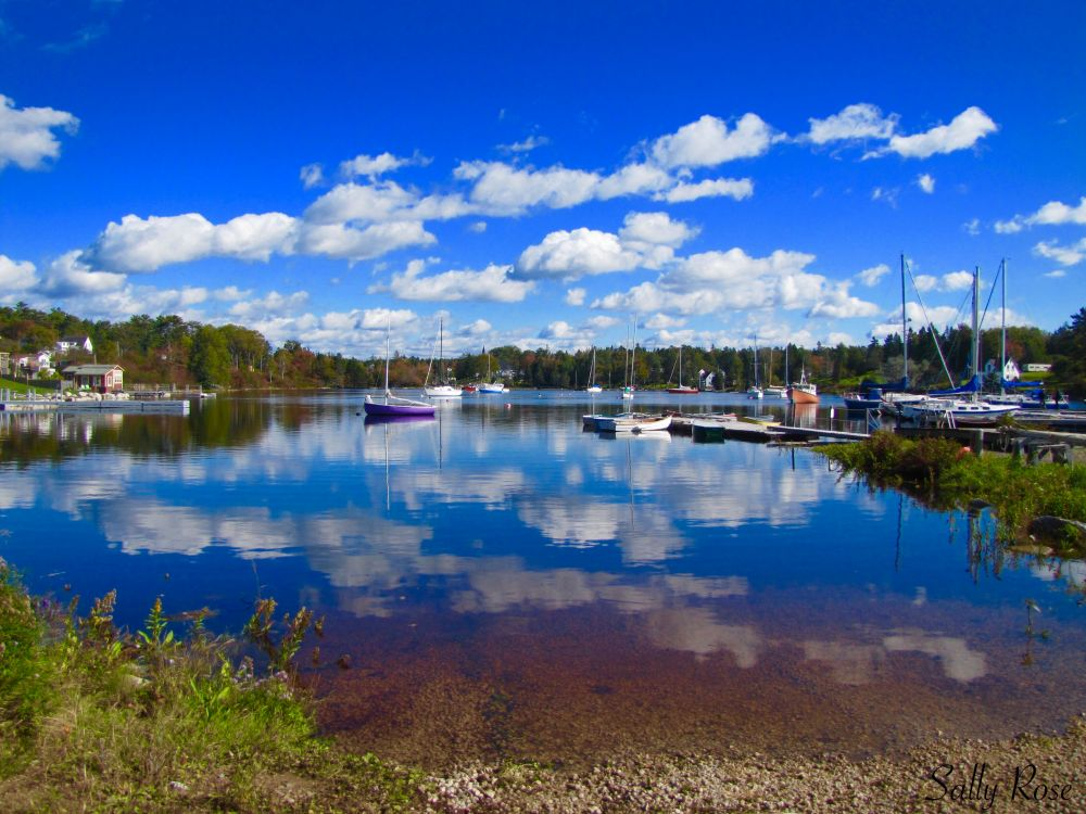 """Beautiful harbour"", by Sally Rose. Taken at Hubbard's N.S.."
