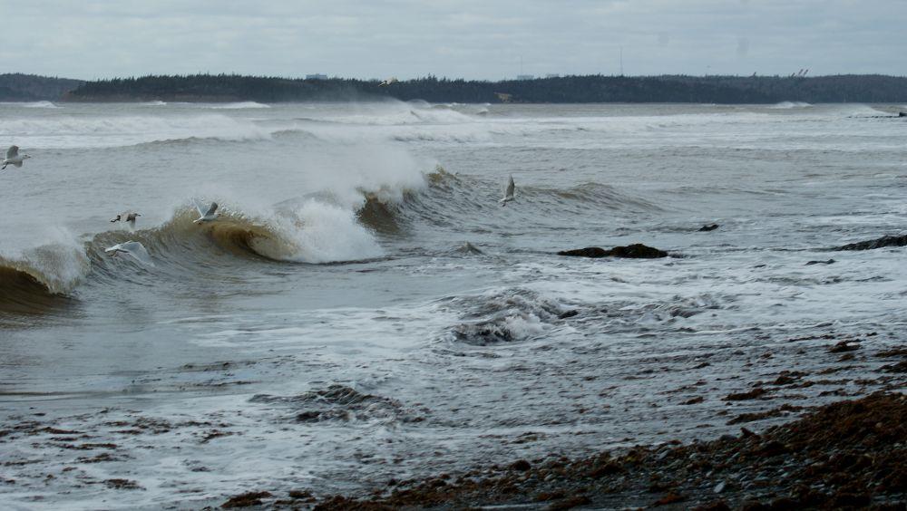 """Waves"", by Margaret Keizer. Taken at Eastern Passage."