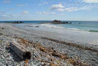 THE HAWK BEACH by