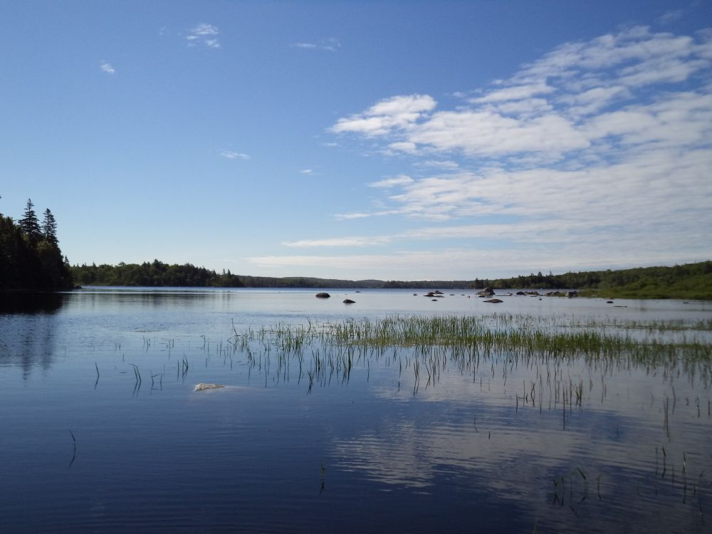 """A Perfect Spring Day"", by Anita Daye. Taken at Second Lake, Eastern Shore, NS."