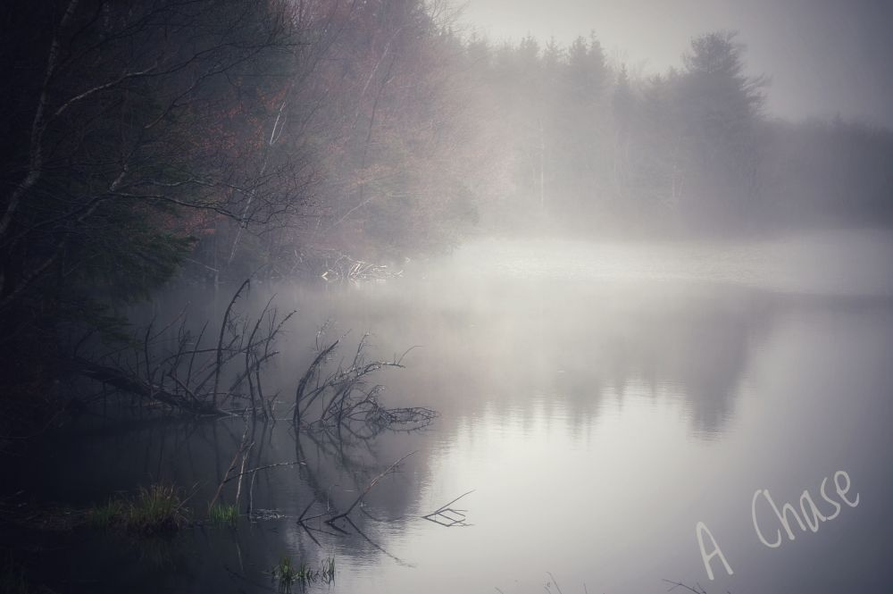 """""""Lakeside on a foggy morning"""", by A Chase. Taken at Dartmouth."""