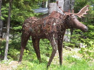 Bruce the Moose by