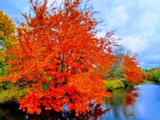 Autumn River by