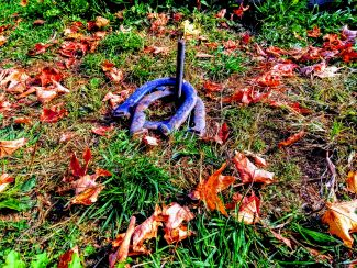 Horseshoes at the Farm by
