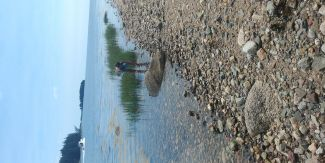 Searching for Beach glass by