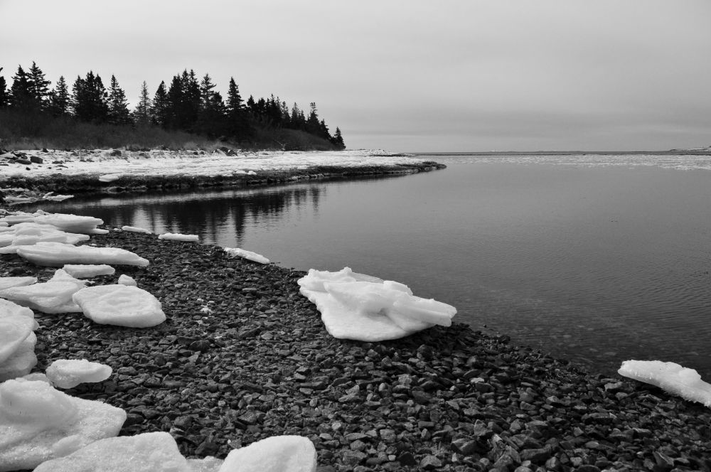 """""""Calm"""", by Glen Nearing. Taken at Yarmouth County."""