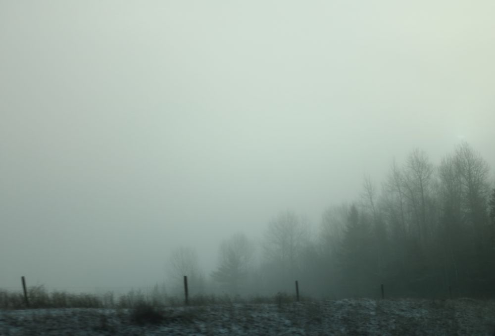 """Fog in January"", by Margaret Keizer. Taken at Oxford, Nova Scotia."