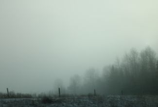 Fog in January by