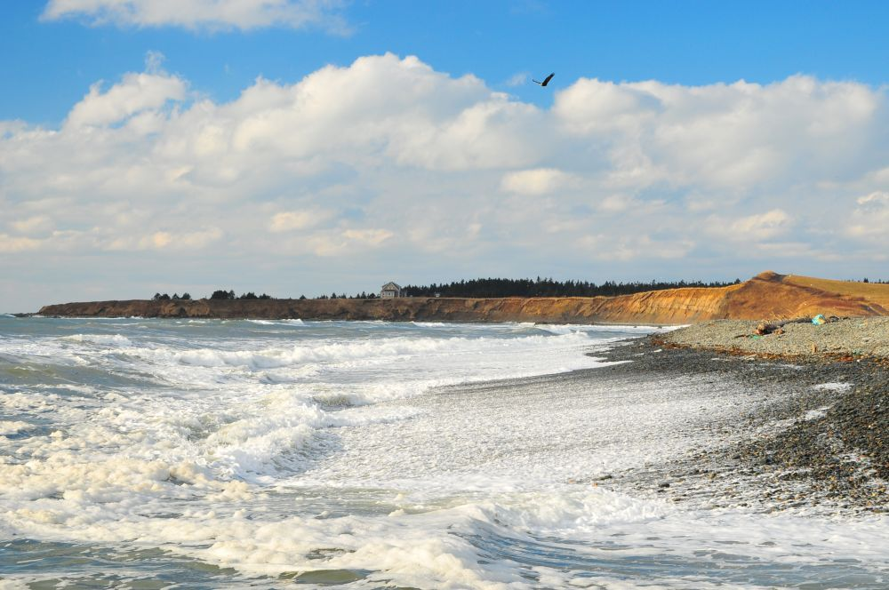 """""""Salmon River N.S."""", by G. NEARING. Taken at DIGBY .CO."""